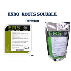 ERS - Endo Roots Soluble -...